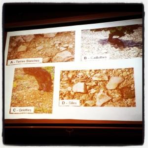 sauvion sancerre soil subsoil