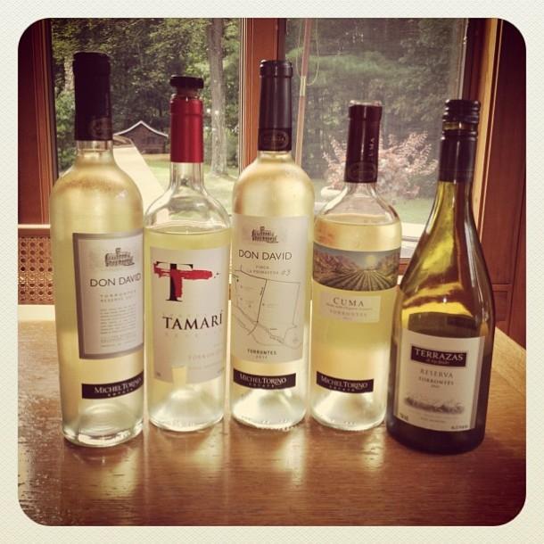 torrontes wine sampling