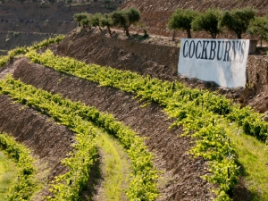 cockburn's port sign douro