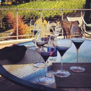 vineyard 29 cabernet franc