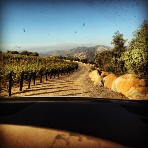 brand winery pritchard hill