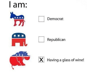 democrat republican election day wine