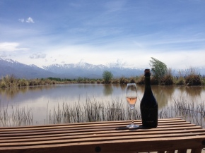 the 12 days of fizzmas: sparkling malbec from mendoza on day7