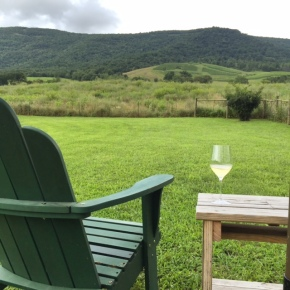 virginia wine camp adventures
